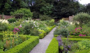 PHC Garden
