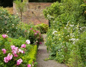 Summer walled garden (1)
