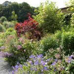 Walled Garden 1