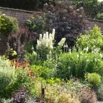 Walled Garden 4