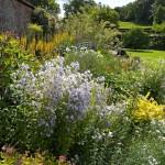 Walled Garden 6