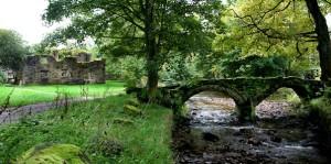 Web-Packhorse-Bridge