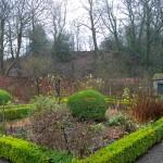 Garden Winter (1)