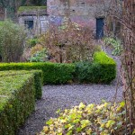 Garden Winter (6)