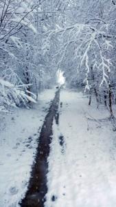 Knuzden Arran Trail (12)