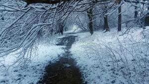 Knuzden Arran Trail (6)