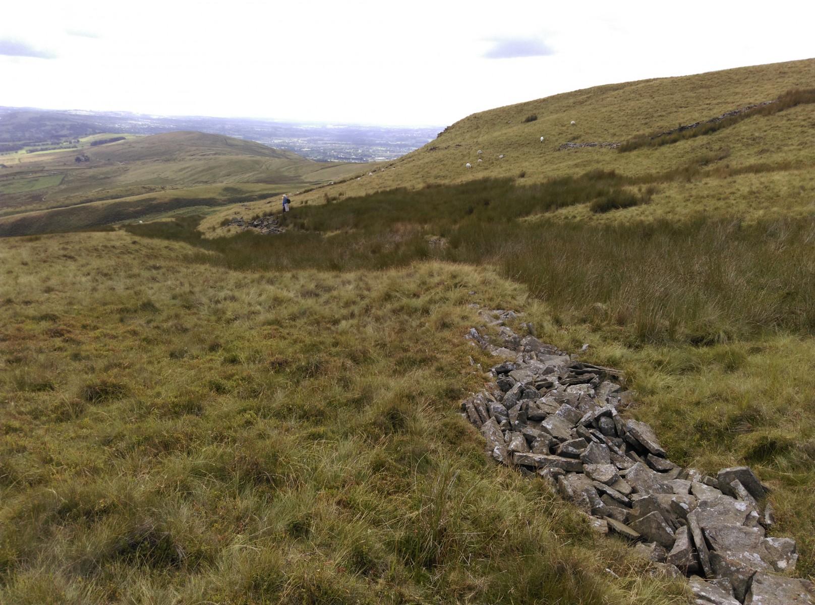 View west over Deerstones