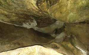 Kinsey Cave roof